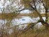 Деснянское озеро